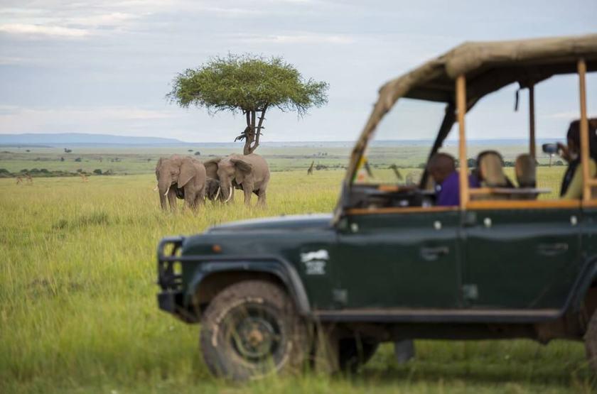 Kilima Camp, Masai Mara, Kenya, safari en 4x4