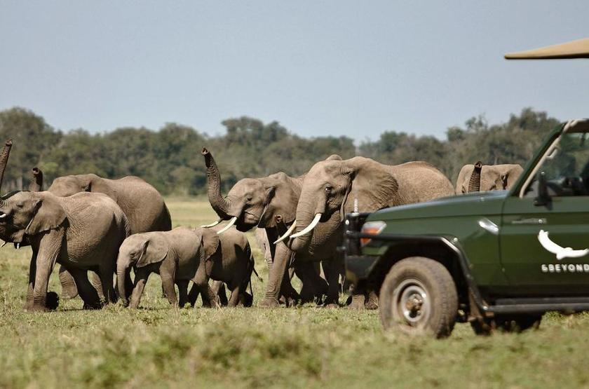 &Beyond Kichwa Tembo, Masai Mara, Kenya, safari en 4x4