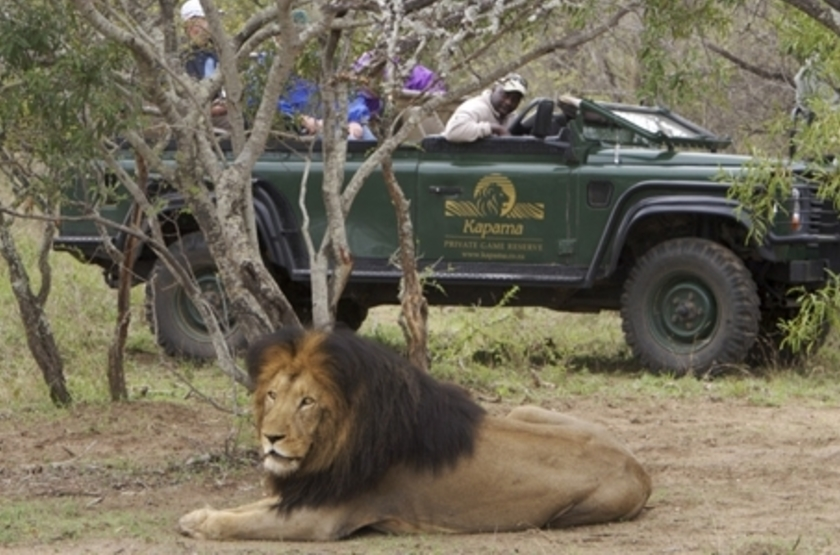 Kapama River Lodge, Afrique du Sud, safari en 4x4