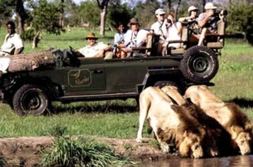 Nkorho Bush Lodge,  Sabi Sand, Afrique du Sud, safari en 4x4