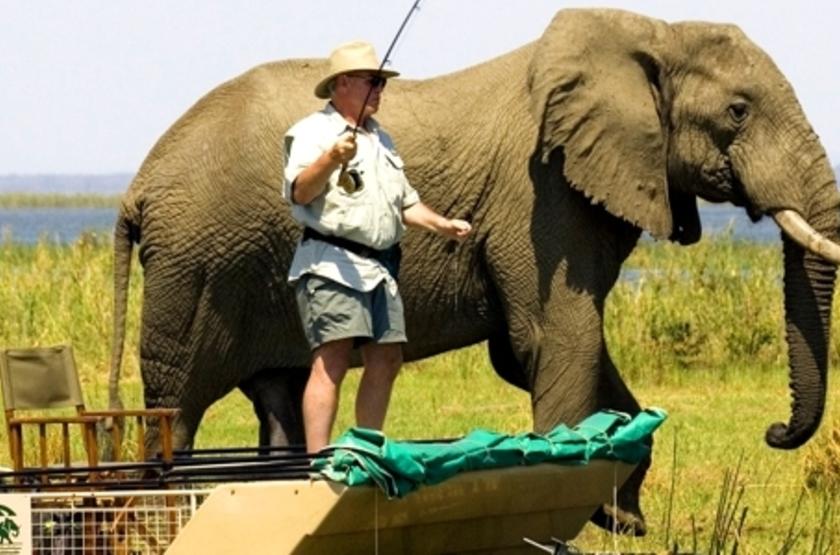 Chiawa Camp, Lower Zambezi, Zambie, safari en bateau