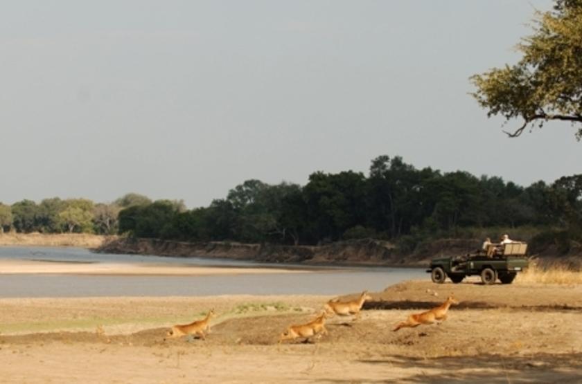 Kapani Lodge, South Luangwa Valley, Zambie, safari en 4x4