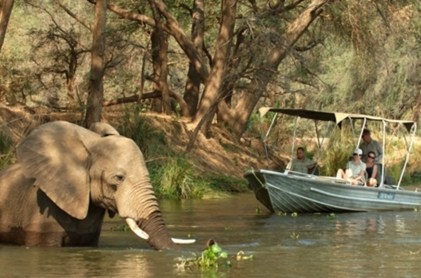 Old Mondoro, Lower Zambezi, Zambie, safari en bateau