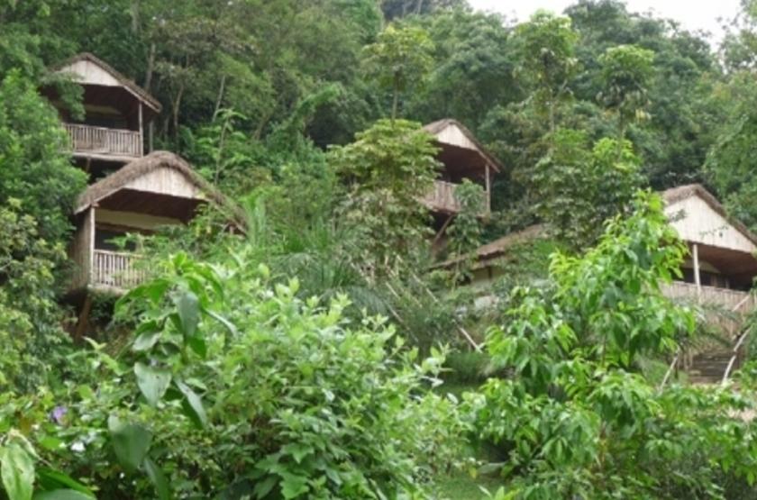 Buhoma Lodge, Bwindi, Ouganda, chalets