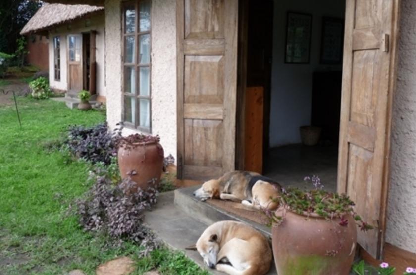 Ndali Lodge, Ouganda