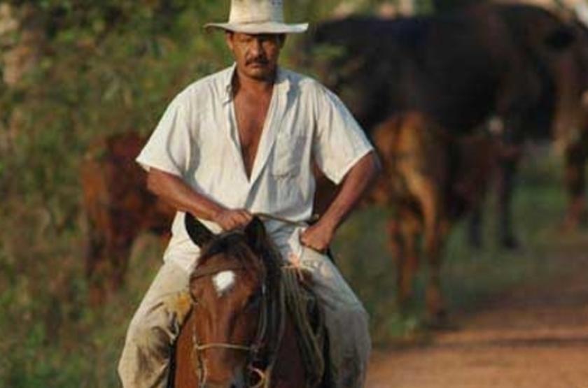Hato Piñero, Los Llanos, Venezuela, excursion à cheval