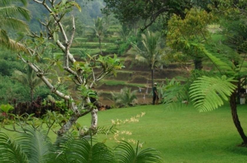 Ijen Resort, Java, Indonésie, jardin