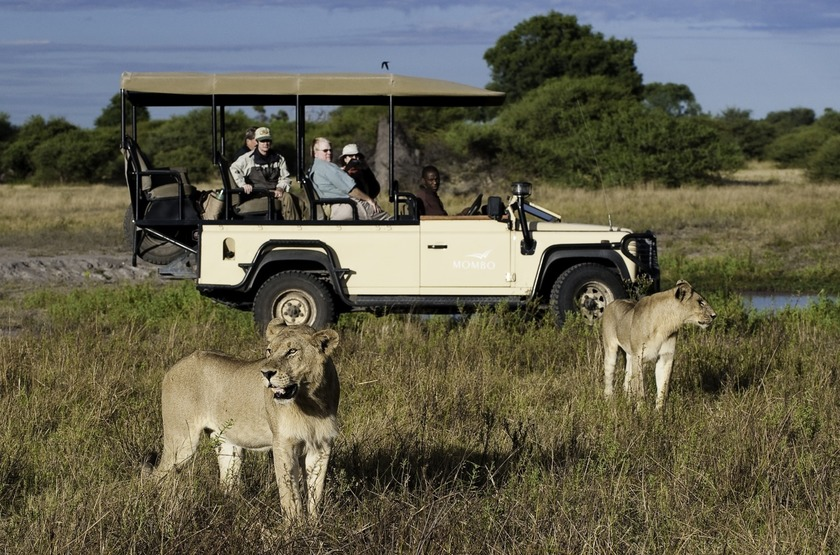 Botswana   mombo camp   safari   moremi slideshow