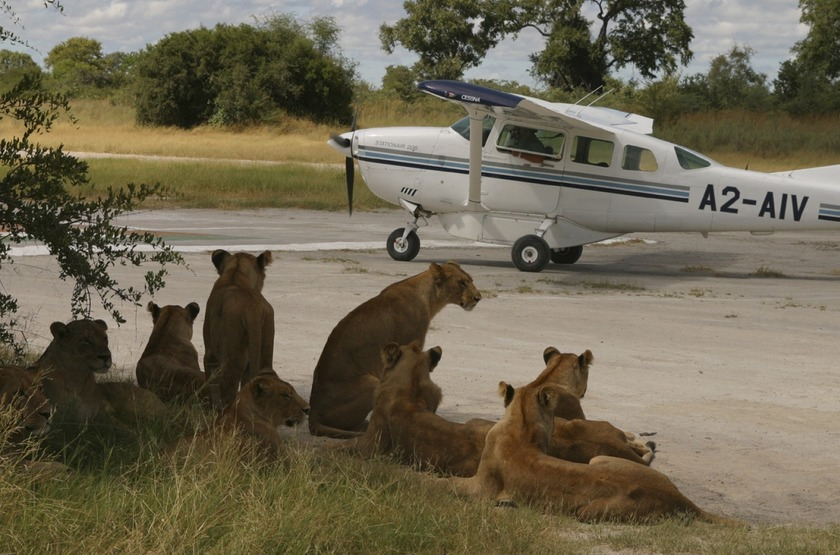 Vumbura Plains Camp, Okavango, Botswana, airstrip