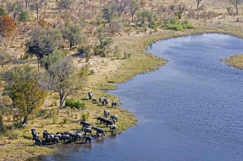 Selinda Camp, Linyanti, Botswana, vue aérienne