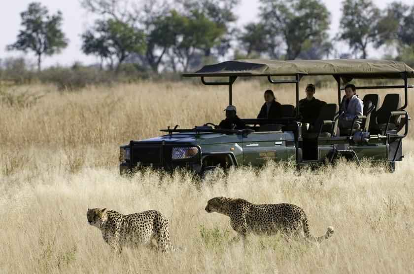 Selinda Camp, Linyanti, Botswana, safari en 4x4