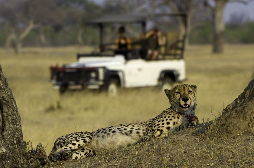 Little Makalolo, Parc Hwange, safari en 4x4