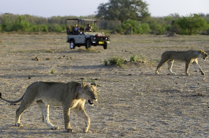 Ruckomechi Camp, Mana Pools, Zimbabwe, safari en 4x4