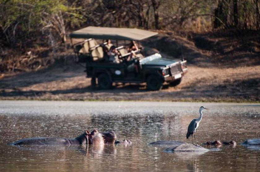 Chindeni Camp, South Luangwa, Zambie, safari en 4x4