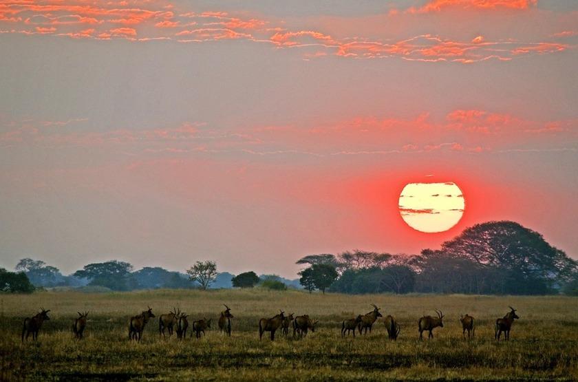 Shumba Camp, Parc de Kafue, Zambie, sunset