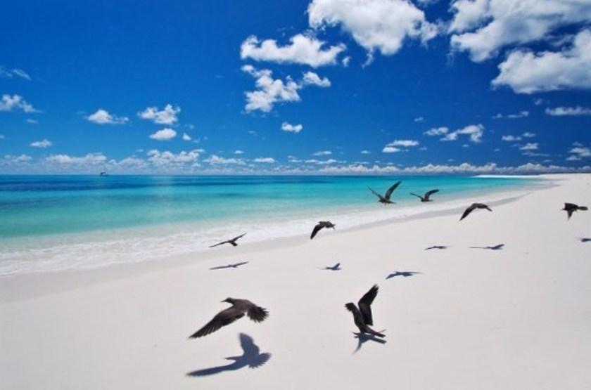Bird Island Lodge, Seychelles, plage
