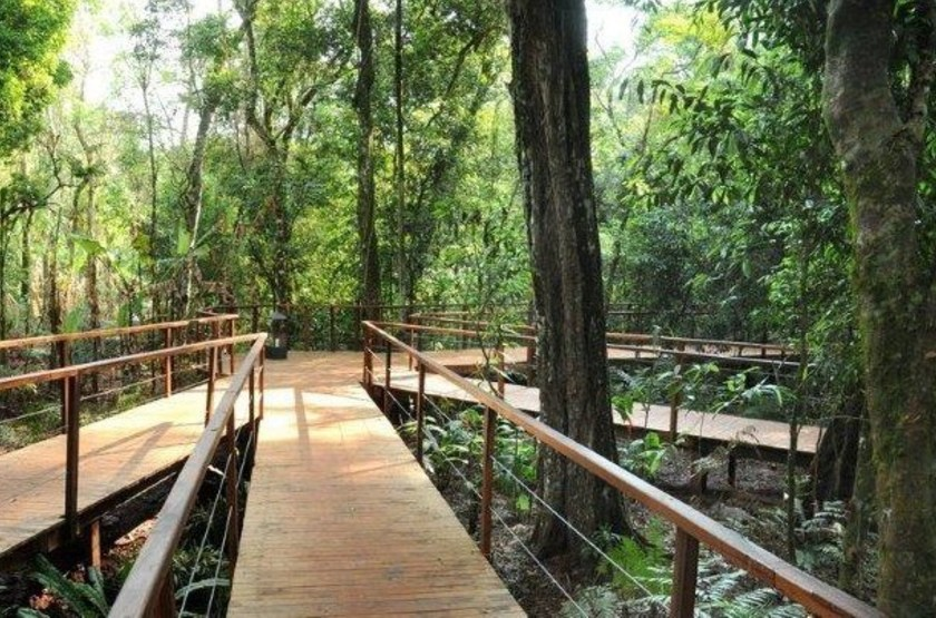 La Cantera Jungle Lodge, Iguazu, Argentine