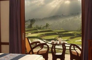 Ijen resort   terrasse listing