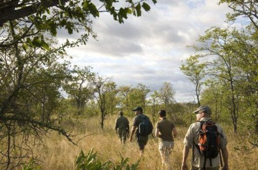 Machampane tented camp   walking safari slideshow