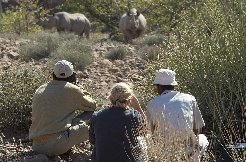 Desert Rhino Camp, Palmwag, Damaraland, Namibie, à la recherche des rhinocéros