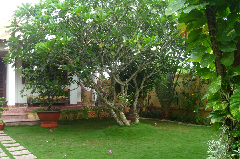 Villa Balny, My Tho, Vietnam, jardins