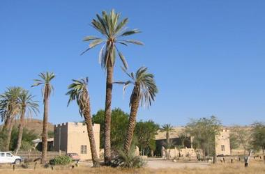 Fort sesfontein lodge   namibie fort sesfontein   exterieur fort listing