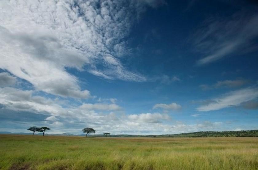 Serengeti Serena Lodge, Tanzanie, vue sur les plaines du Serengeti