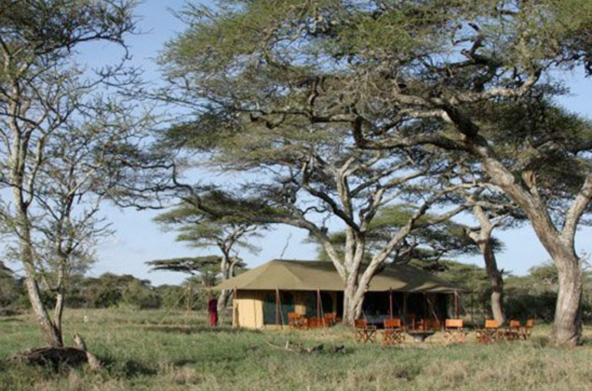Lemala mara tented camp   serengeti national park  tanzania   camp slideshow
