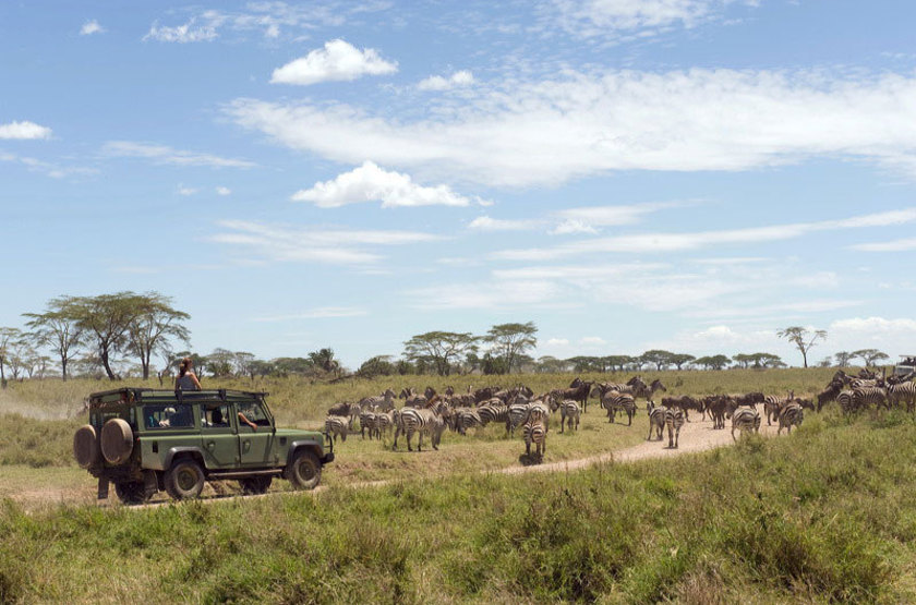 Ikoma bush camp   safari en 4x4 slideshow
