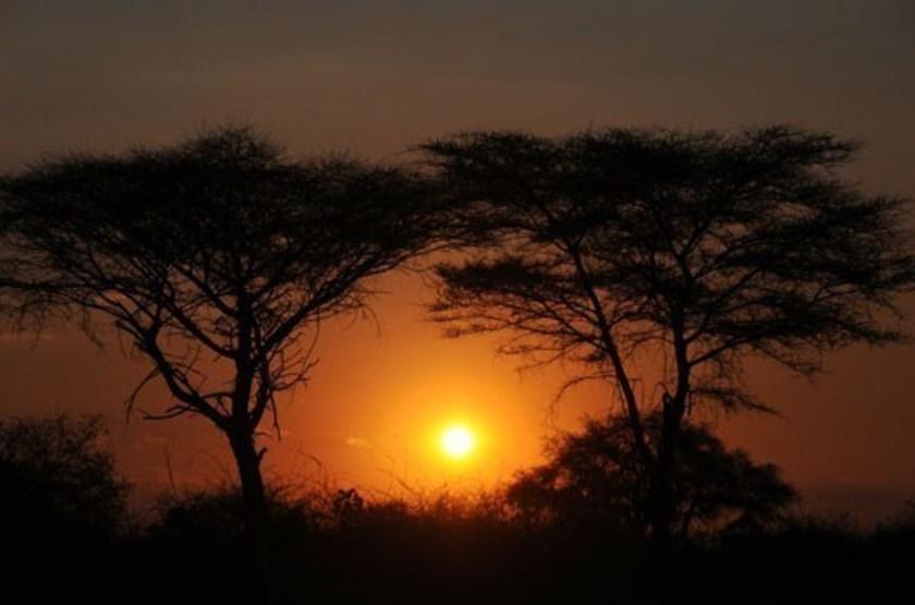 Mwagusi camp   ruaha   coucher de soleil slideshow