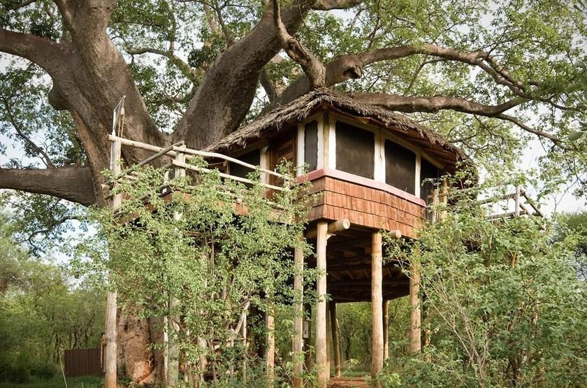 Tarangire Treetops, Concession privée, Tanzanie, bungalow dans les arbres