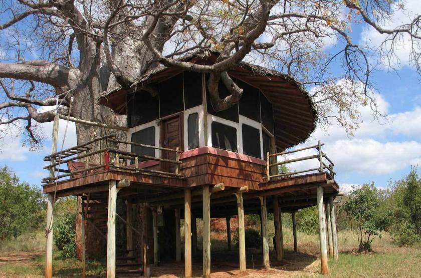 Tarangire Treetops, Concession privée, Tanzanie, bungalow