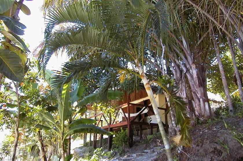 Bush House, canal des Pangalanes, Madagascar, jardin