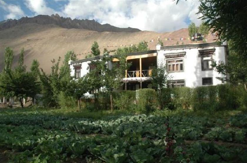Zimskhang Holiday Home, Alchi, Inde, jardin