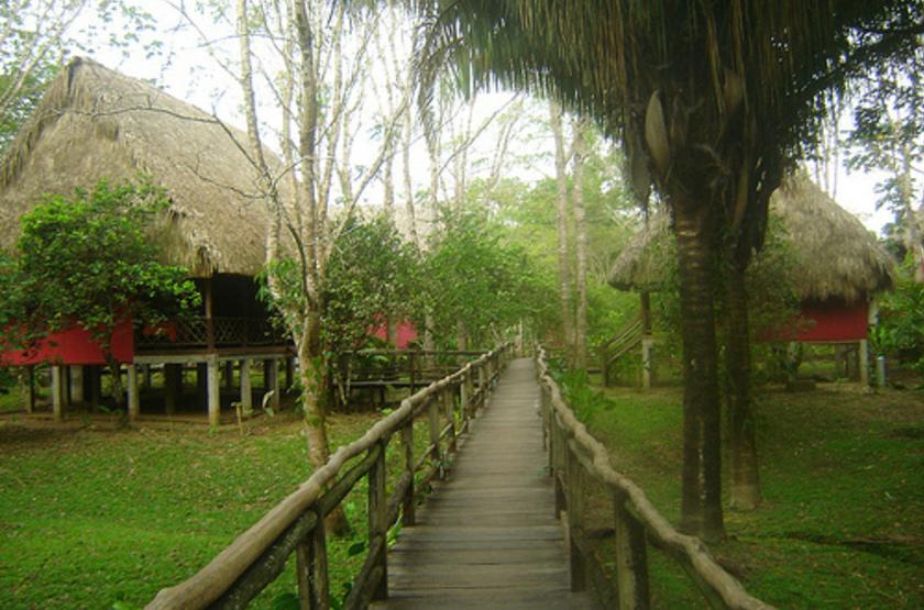 Ara Macao Las Guacamayas, Mexique, jardins