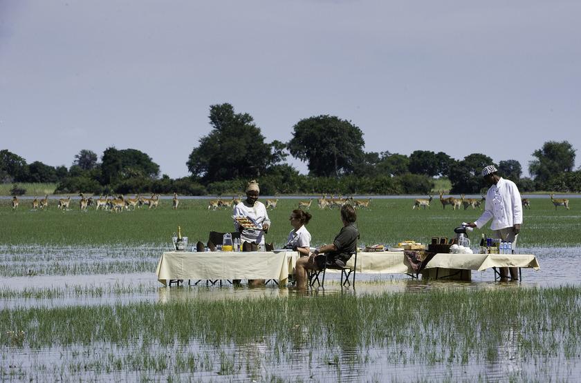 Jao Camp, concession de Jao, Botswana, déjeuner