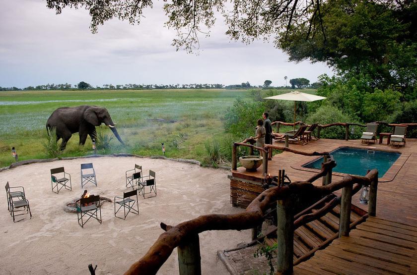 Little Tubu, concession de Jao, Okavango, Botswana, terrasse