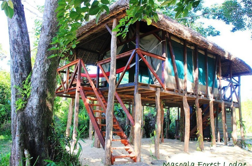 Masaola Forest Lodge, Parc National Masaola, Madagascar, bungalow