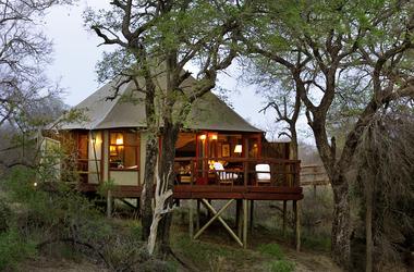 Afrique du sud   hamiltons tented camp kruger listing