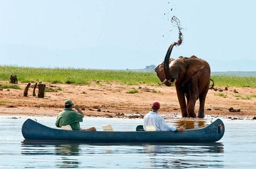 Musango Safari Camp, Matusadona, Zimbabwe, safari en canoé
