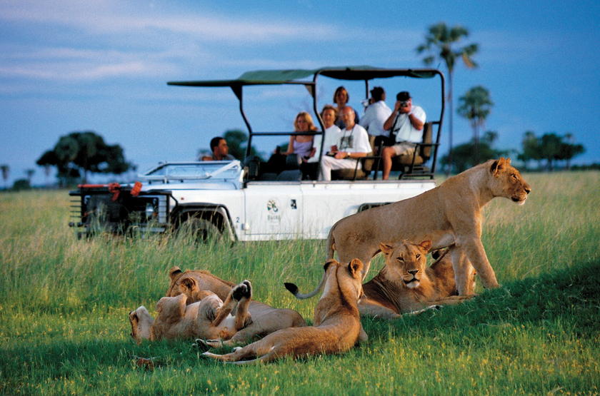 Zimbabwe hwange   makololo plains   game drive da slideshow