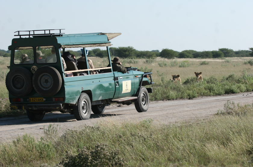 Kazuma Trails, Safari semi luxury, Botswana, safari privatisé en 4x4