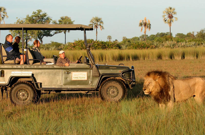 Kwetsani camp   game drive slideshow