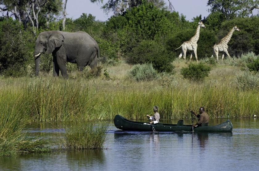 Savuti Camp, Linyanti, Botswana, safari en mokoro