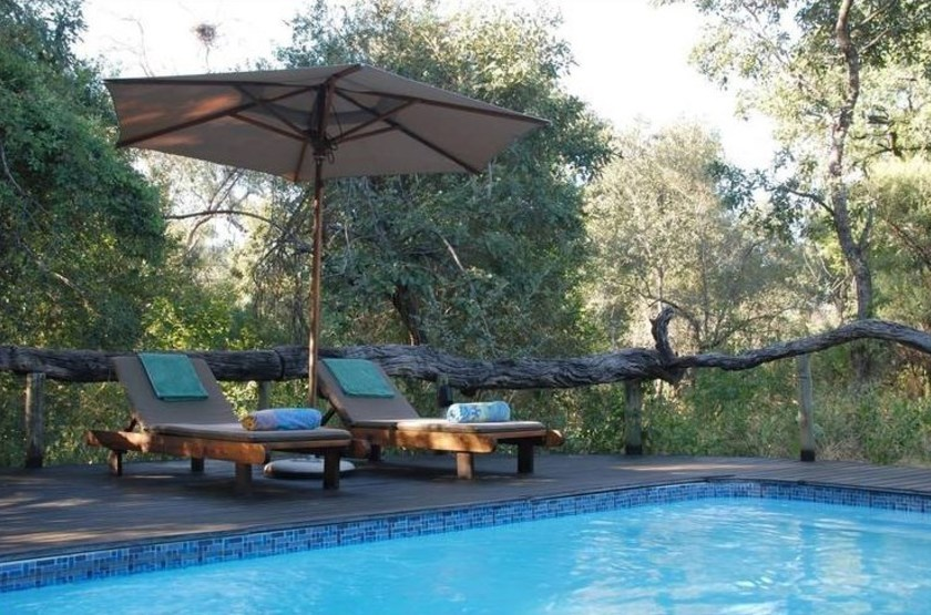 Royal Tree Lodge, Maun, Botswana, piscine
