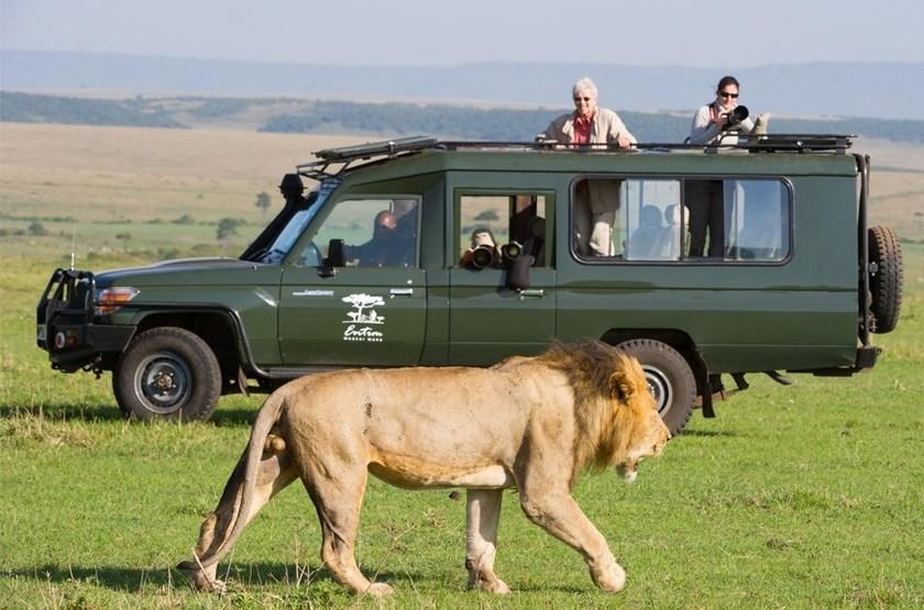 Entim Mara Camp, Masai Mara, Kenya, safari en 4x4