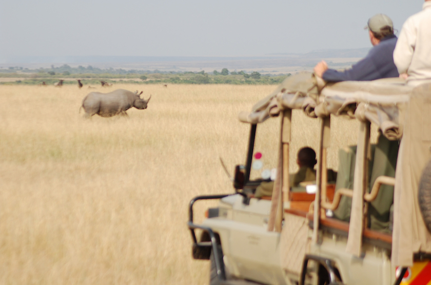 Game drive slideshow