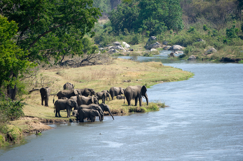 Mkulumadzi Lodge, Reserve de Majete, Malawi