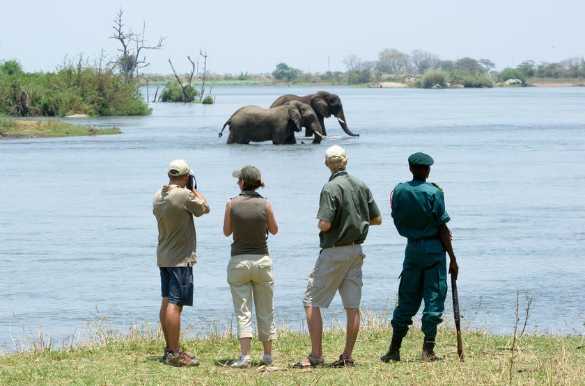 Mkulumadzi Lodge, Reserve de Majete, Malawi, safari à pied