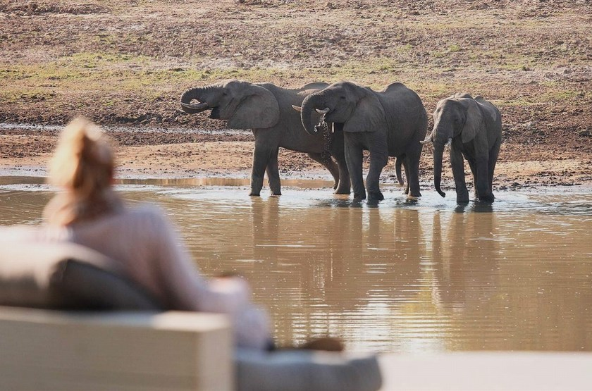 Chinzombo, South Luangwa, Zambie, point d'eau